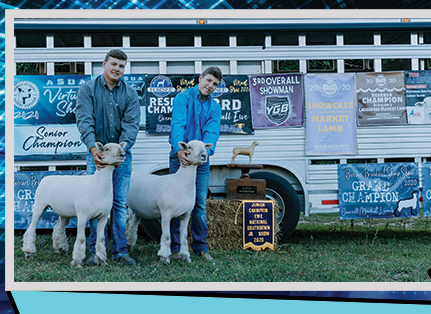 George Brothers Show Lambs  - - Niles, MI